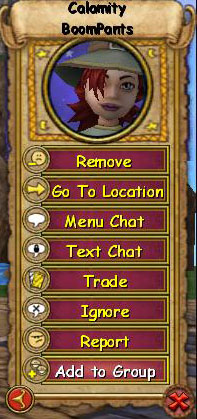 Wizard101 Friends List